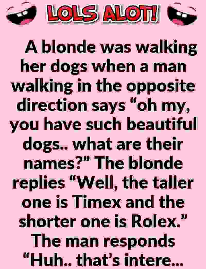 Funny Joke Pictures For Adults : funny, pictures, adults, Hilarious, Short, Clean, Blonde, Walking, Jokes,, Marriage, Jokes