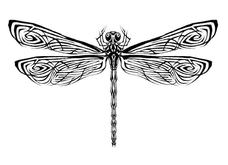 Black Tribal Dragonfly Tattoos Designs With Images Dragonfly Tattoo Design Dragonfly Tattoo Insect Tattoo