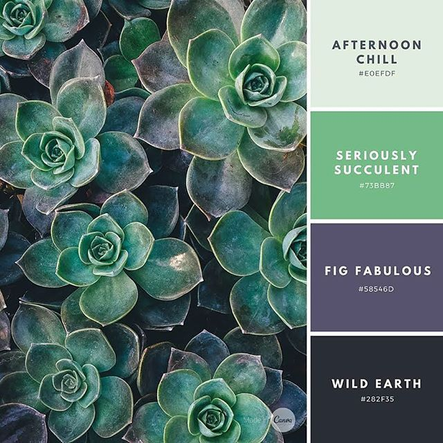 New Color Combination Accent On Autumn Type These Numbers Into