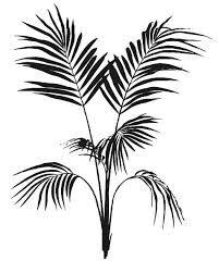 bildergebnis f r palme schwarz pinterest porzellan bemalen porzellan und schwarzer. Black Bedroom Furniture Sets. Home Design Ideas