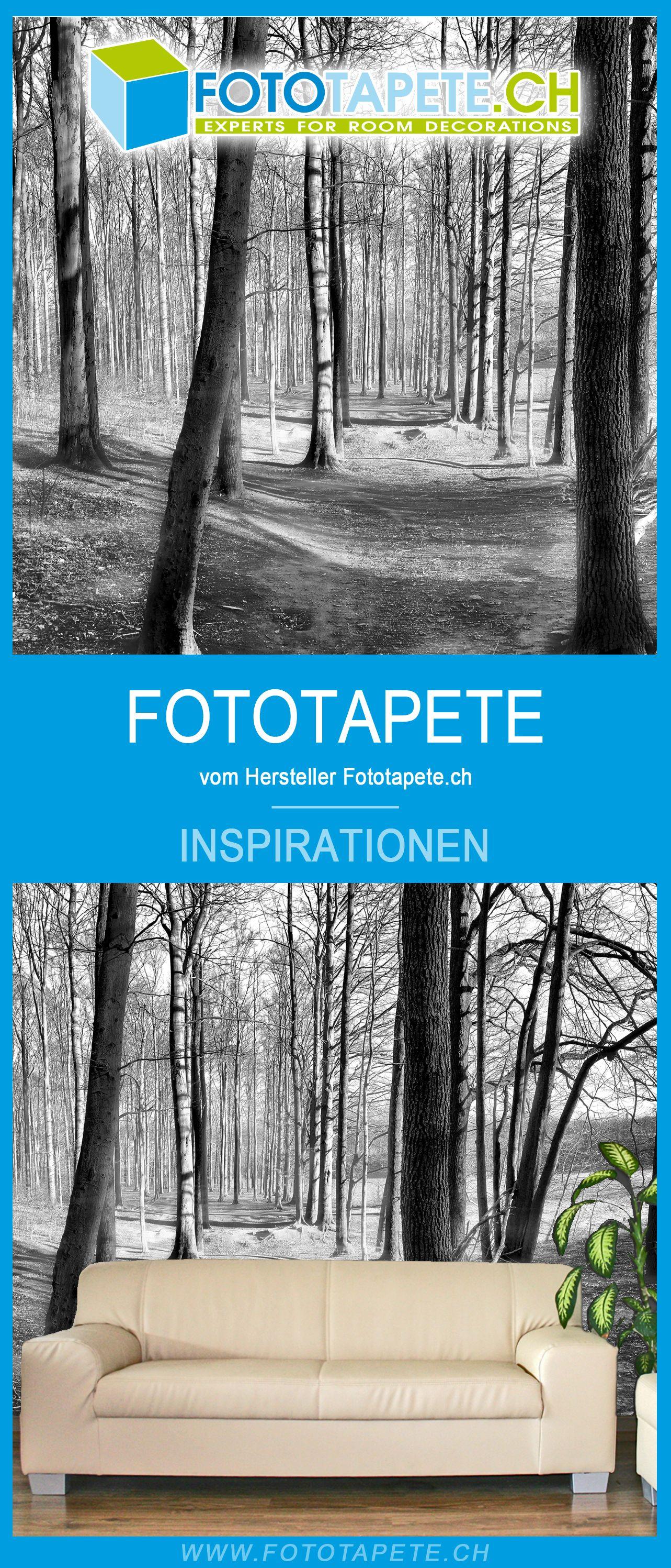 Wohnzimmer Inspiration Mit Einer Wald Fototapete Zur