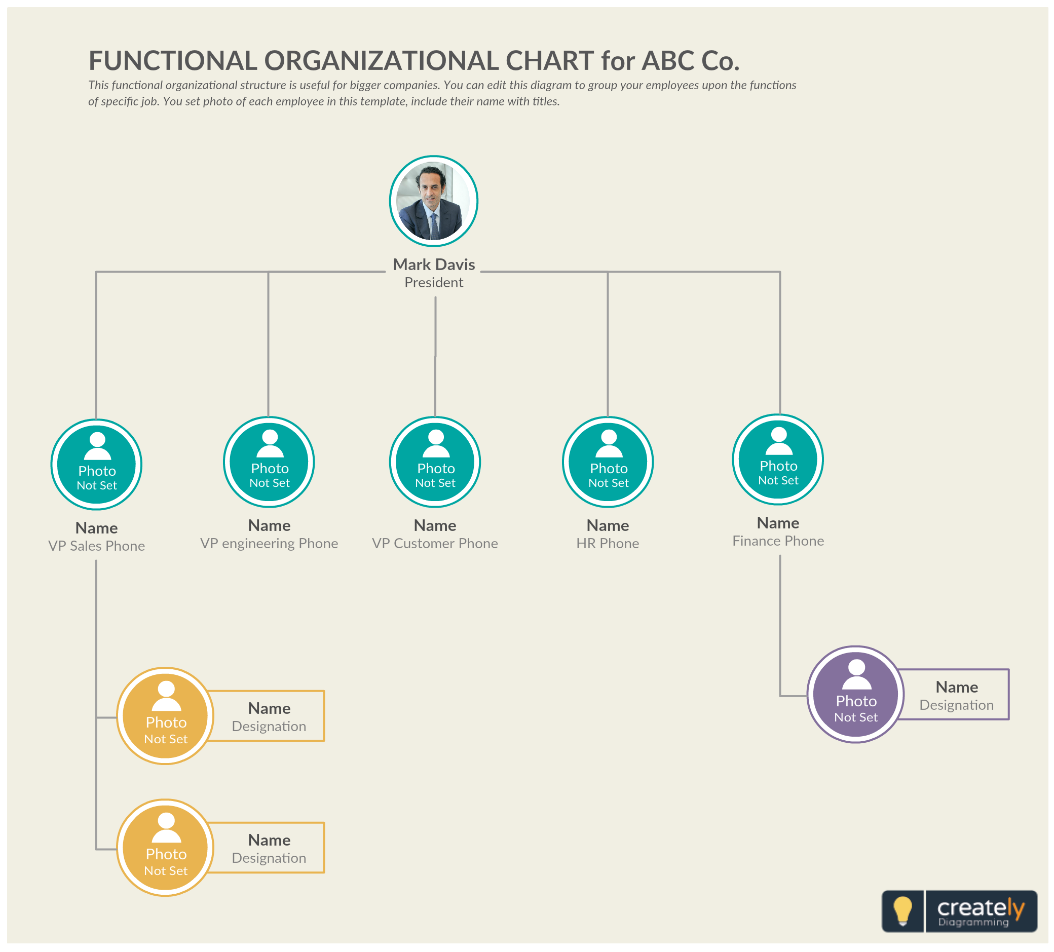 the functional structure organizational chart templates. Black Bedroom Furniture Sets. Home Design Ideas