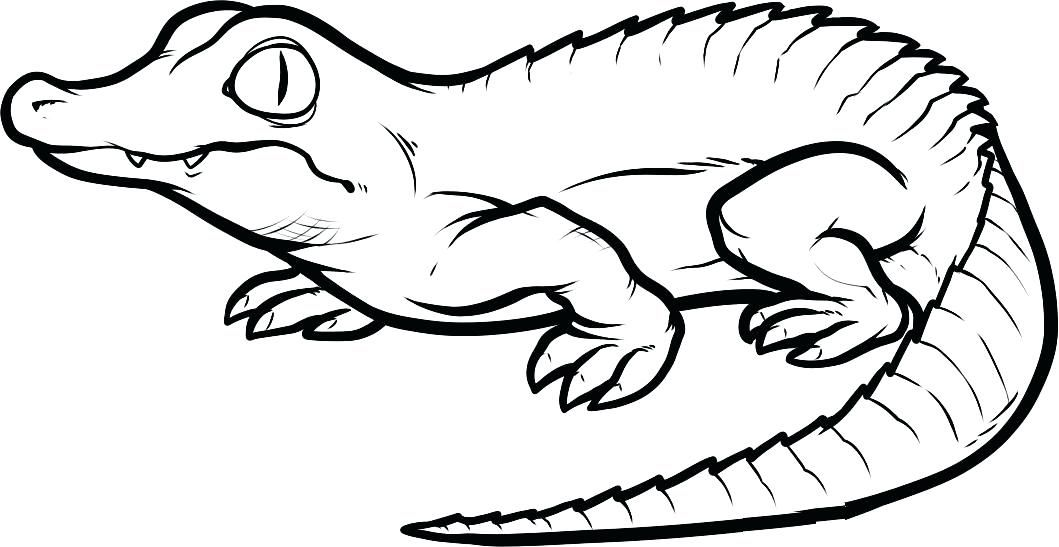 Crocodile Coloring Pages Crocodile Coloring Page Free Printable Crocodile Coloring Pages For Kids I Coloring Pages Animal Coloring Pages Cartoon Coloring Pages