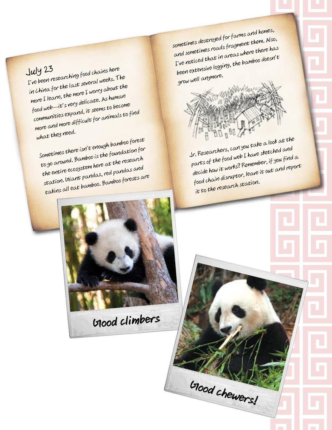 Panda Trek Curriculum