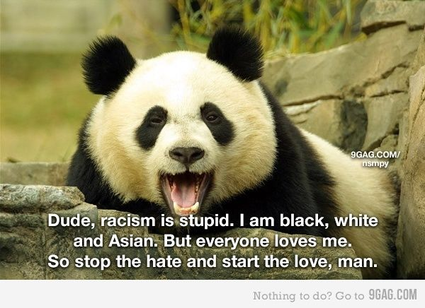 Stop the hate and start the love