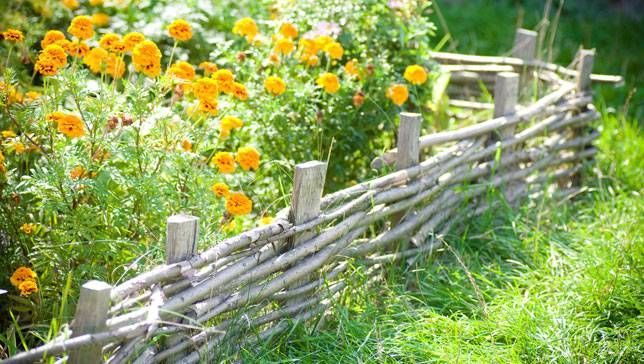 A tiny fence around some flowers