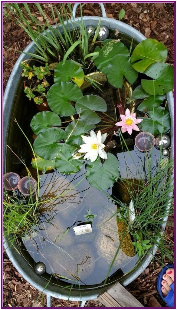 Photo of 25 Awesome Backyard Ponds and Water Garden Landscaping Ideas  aux-pays-des-fle