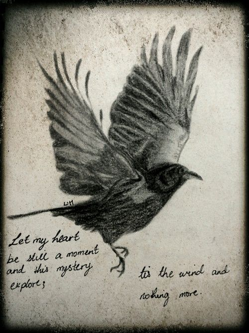 Sayings About Ravens: More Like This: Edgar Allan Poe , Ravens And Poe Quotes