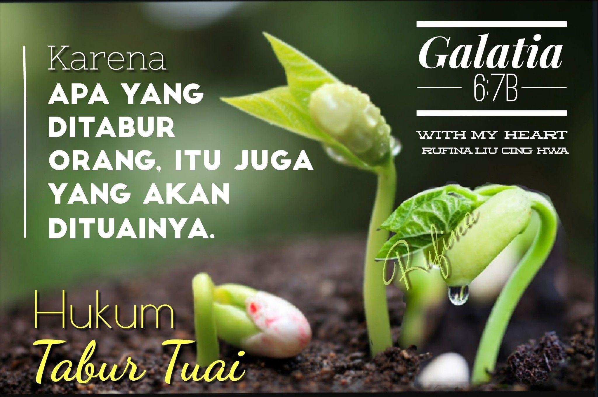 With My Heart Selamat Siang Tym Galatia 6 8 Sebab Barangsiapa Menabu Ayat Alkitab Mazmur 4 Kutipan Alkitab