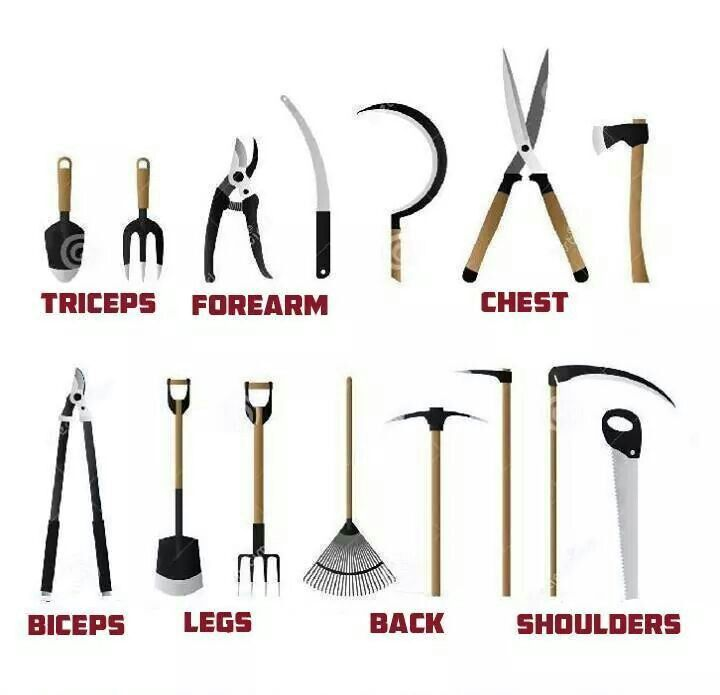 Garden Workout That S What I M Talkin About Garden Tools
