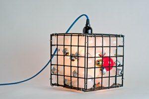 Light Bulb Cage