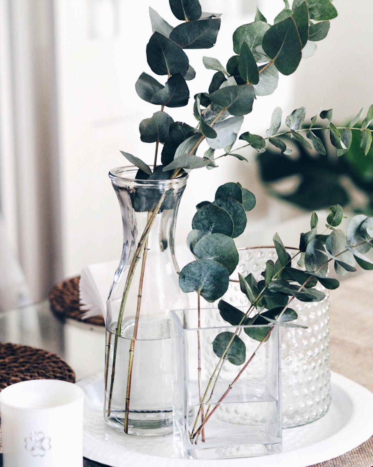 Idee Deco Pour Grand Vase Transparent eucalyptus - trendy interior decor detail | idee deco, deco