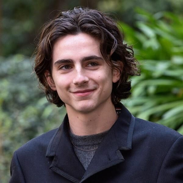 What Product Can Tame My Poofy Wavy Hair To Achieve Something Similar To Timothee Chalamets Hairstyle Https I Long Hair Styles Men Curly Hair Men Poofy Hair