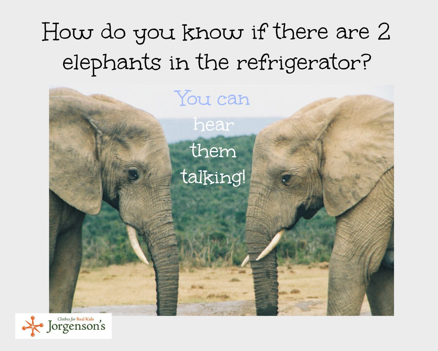 Elephant jokes - photo#35