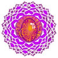 Chakra Animal Symbols And Meaning On Animal Symbolism