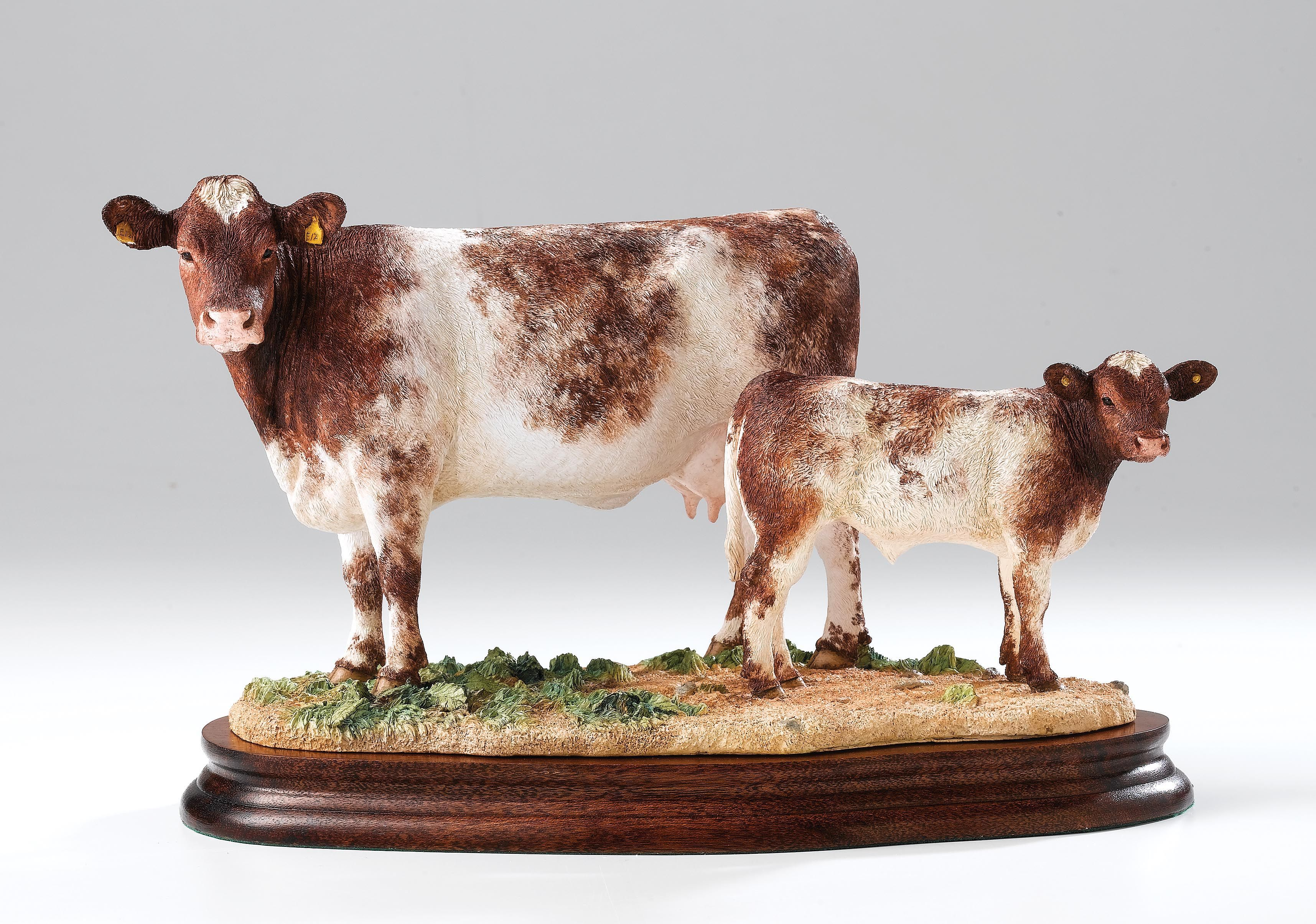 B1139 Beef Shorthorn Cow Calf Limited Edition 500 Introduced