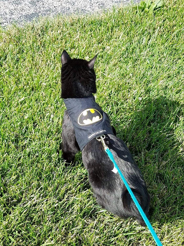 Mynwood Cat Jacket/Harness Batman Adult Cat Escape Proof