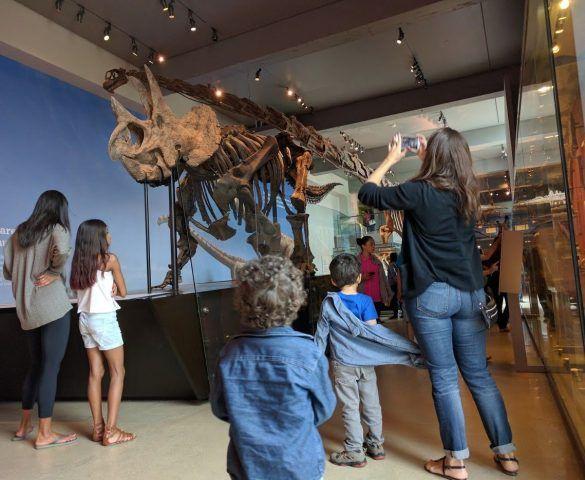 Dinosaurs! (At the LA Natural History Museum)