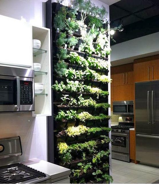 Jard n vertical para la cocina wall planting pinterest for Jardin vertical cocina
