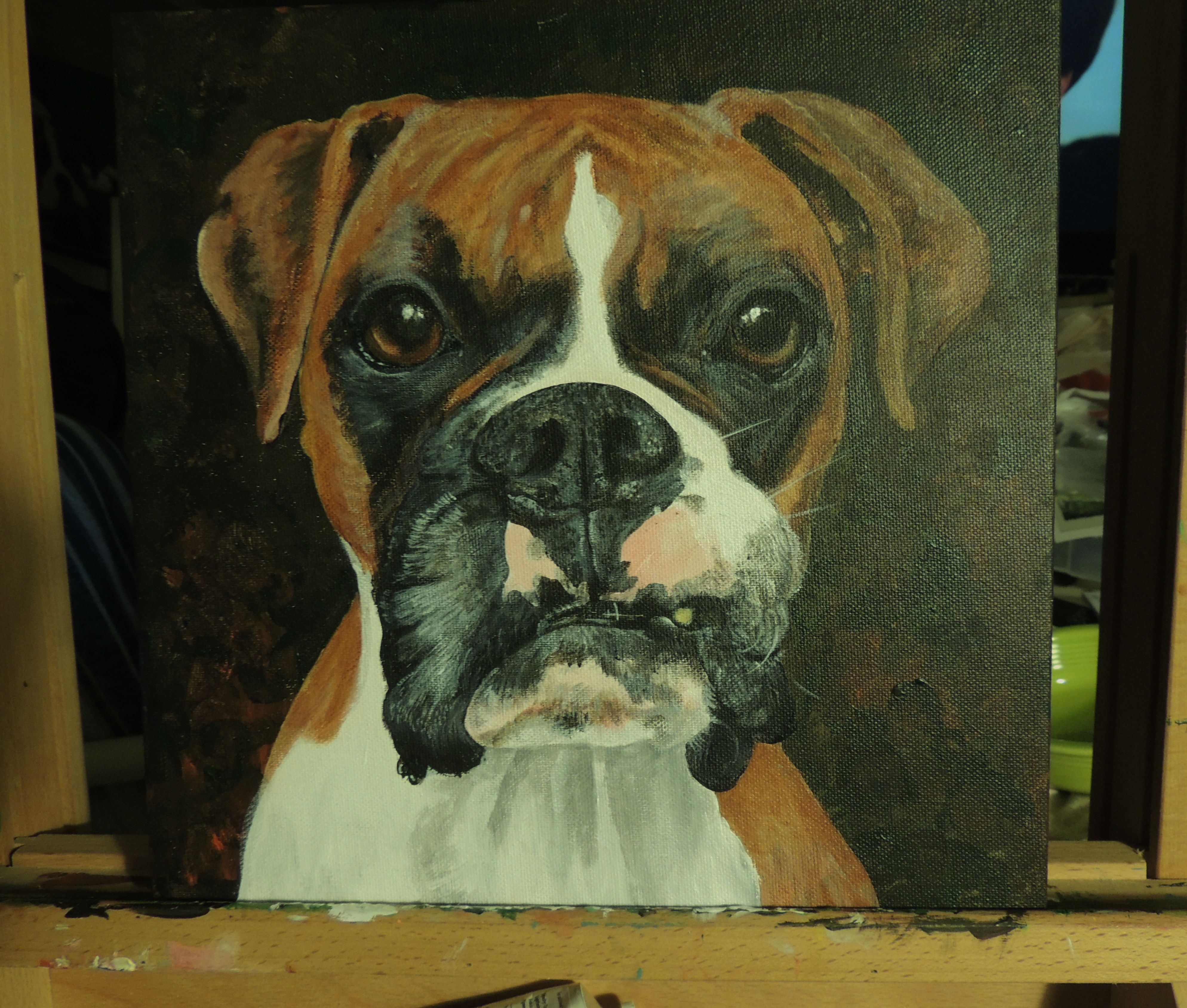 12 x 12 acrylic of Buster BOXERS Artwork, Animals, Art