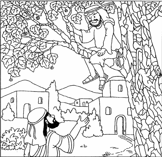 Preschool bible pages zacchaeus 19 png