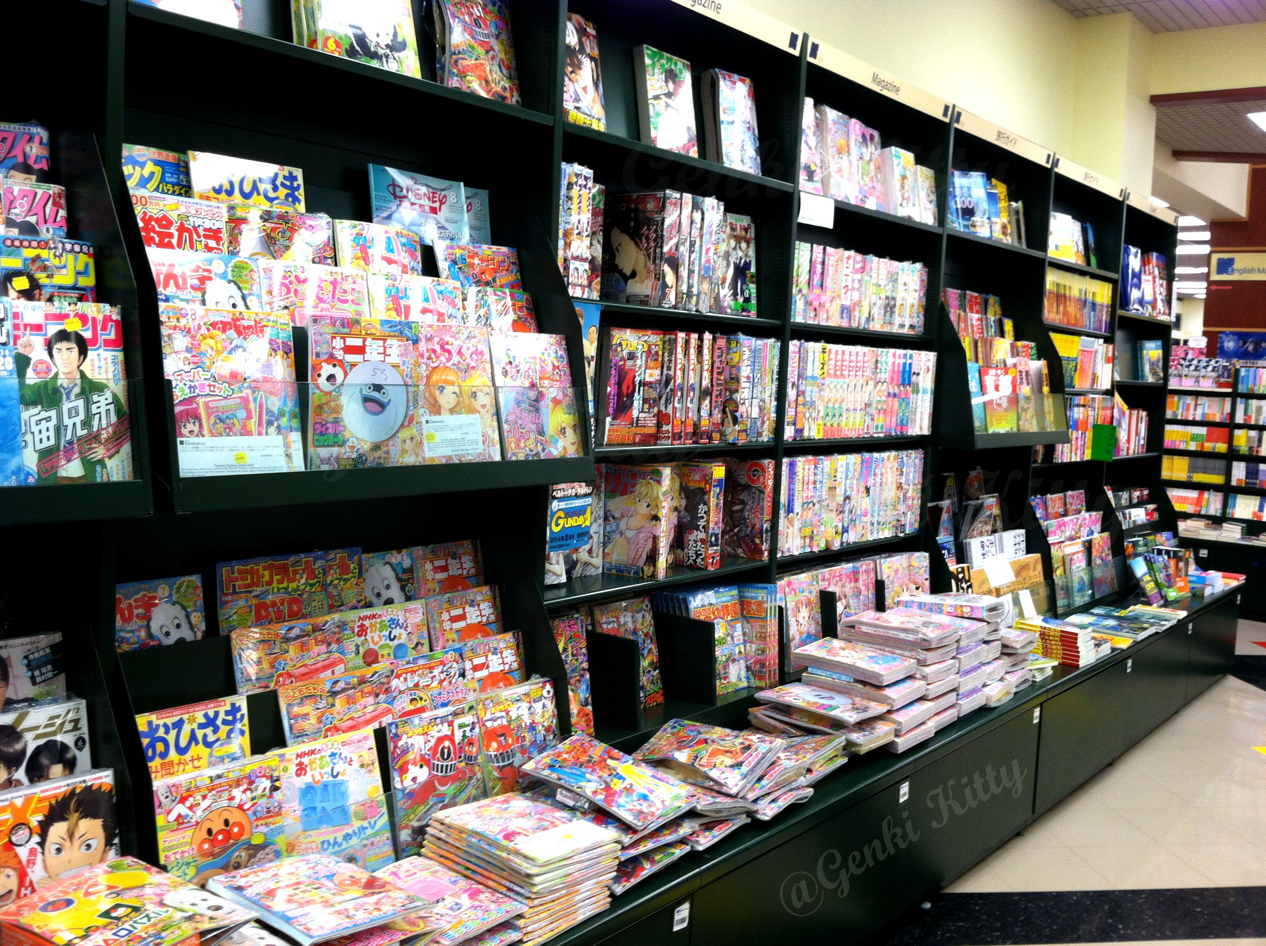 Tarba Mobili ~ Chicago bound again: vegan travels chicago and manga books