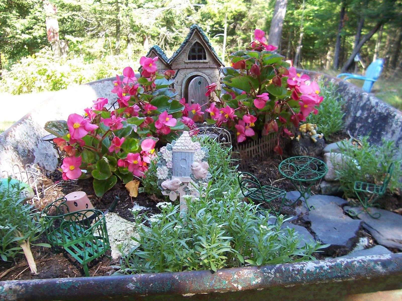 outdoor fairy garden plants for colorado | ... warm weather does ...