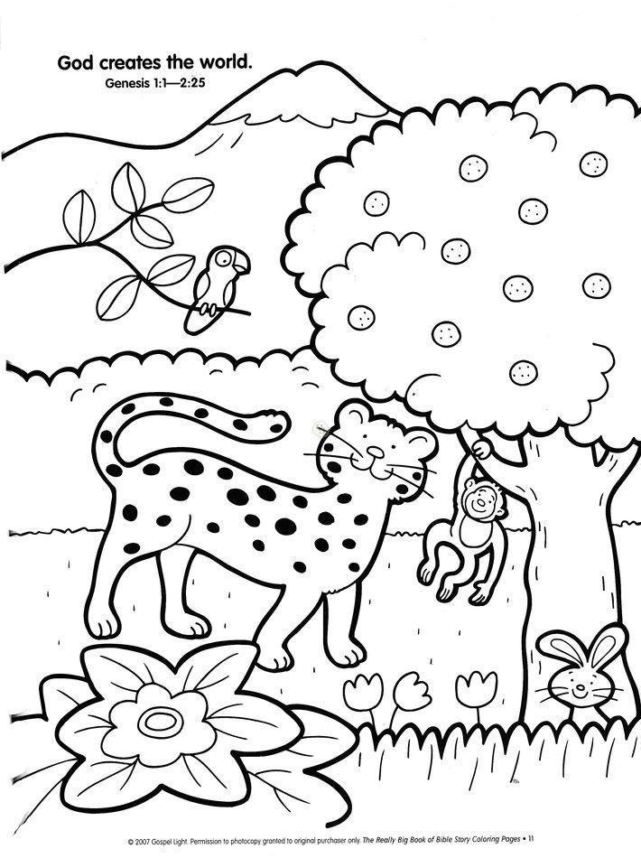 Creation Coloring Pages | Creation coloring pages, Bible ...