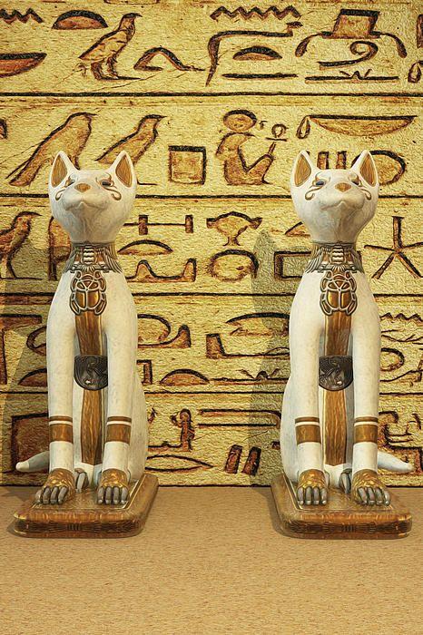 Egyptian Cat Statues - Hieroglyphic Script Fine Art Prints ...