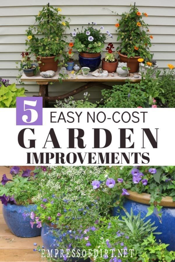 Improve Your Garden Instantly Without Spending a Dime ...