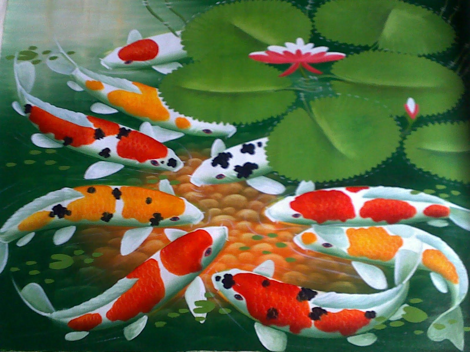 Best wallpaper hd koi fish for desktop free download for Koi fish wallpaper
