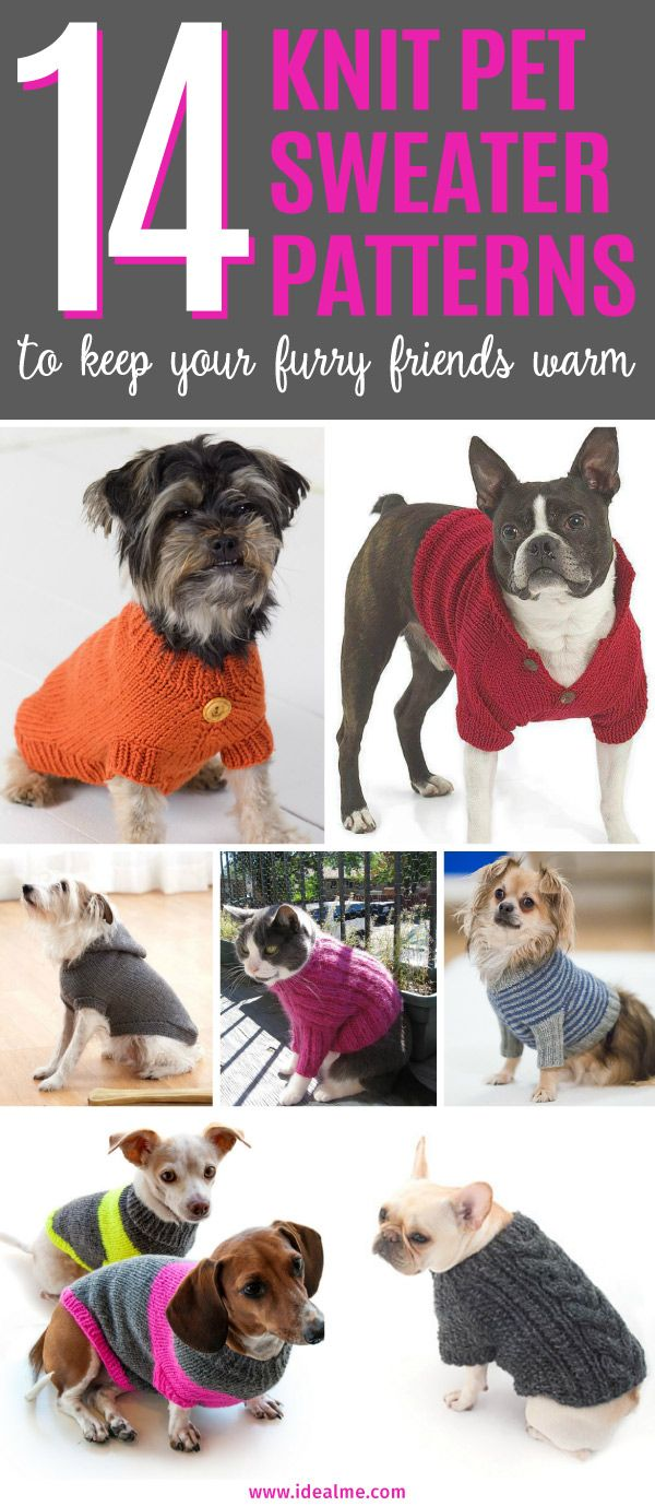 14 Knit Pet Sweater Patterns to Keep Your Furry Friends Warm   Tejido