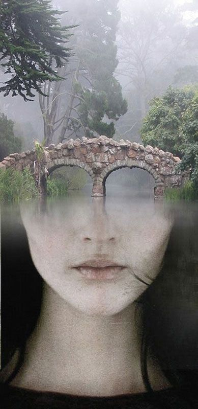 Surreal Portraits Blended Into Landscape Photos Surreal Portrait Optical Illusion Paintings Illusion Paintings