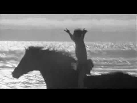 The Black Stallion Tribute. One of the most beautiful horse/animal films. Stunning filmography. A tribute to the beauty of the horse