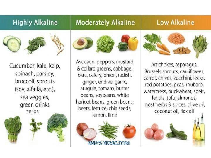 Alkaline Food Range
