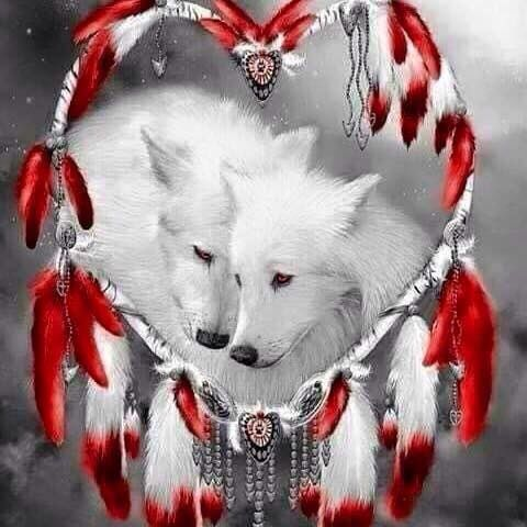 White wolves in love