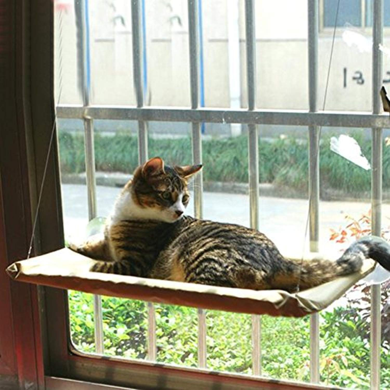 Mcgradyxm Sunny Seat Pet Bed Window Mounted Cat Bed Windowsill Pet Bed Pet Hammock Hanging Shelf Seat More Info Could Be Cat Hammock Cat Window Pet Hammock