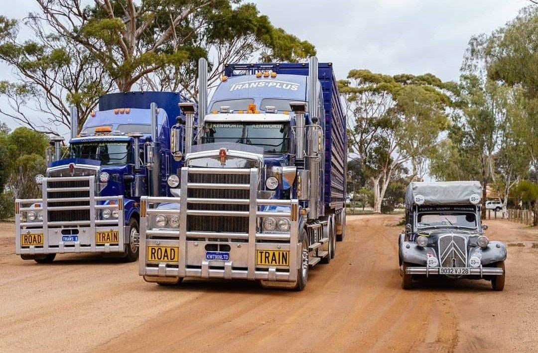 Pin by garywalker on trucks trucks kenworth vehicles