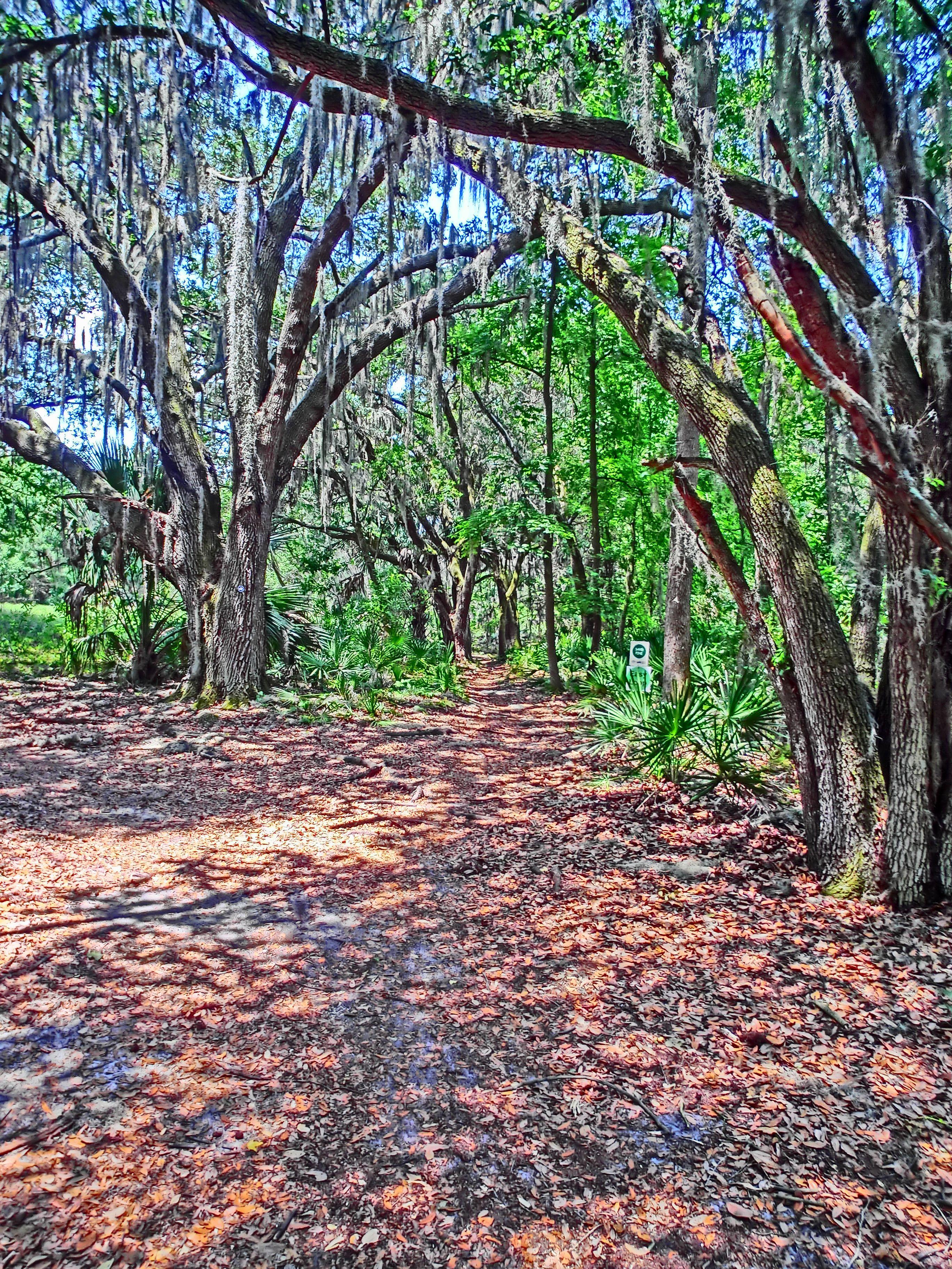 Alafia River State Park Florida state parks, State parks