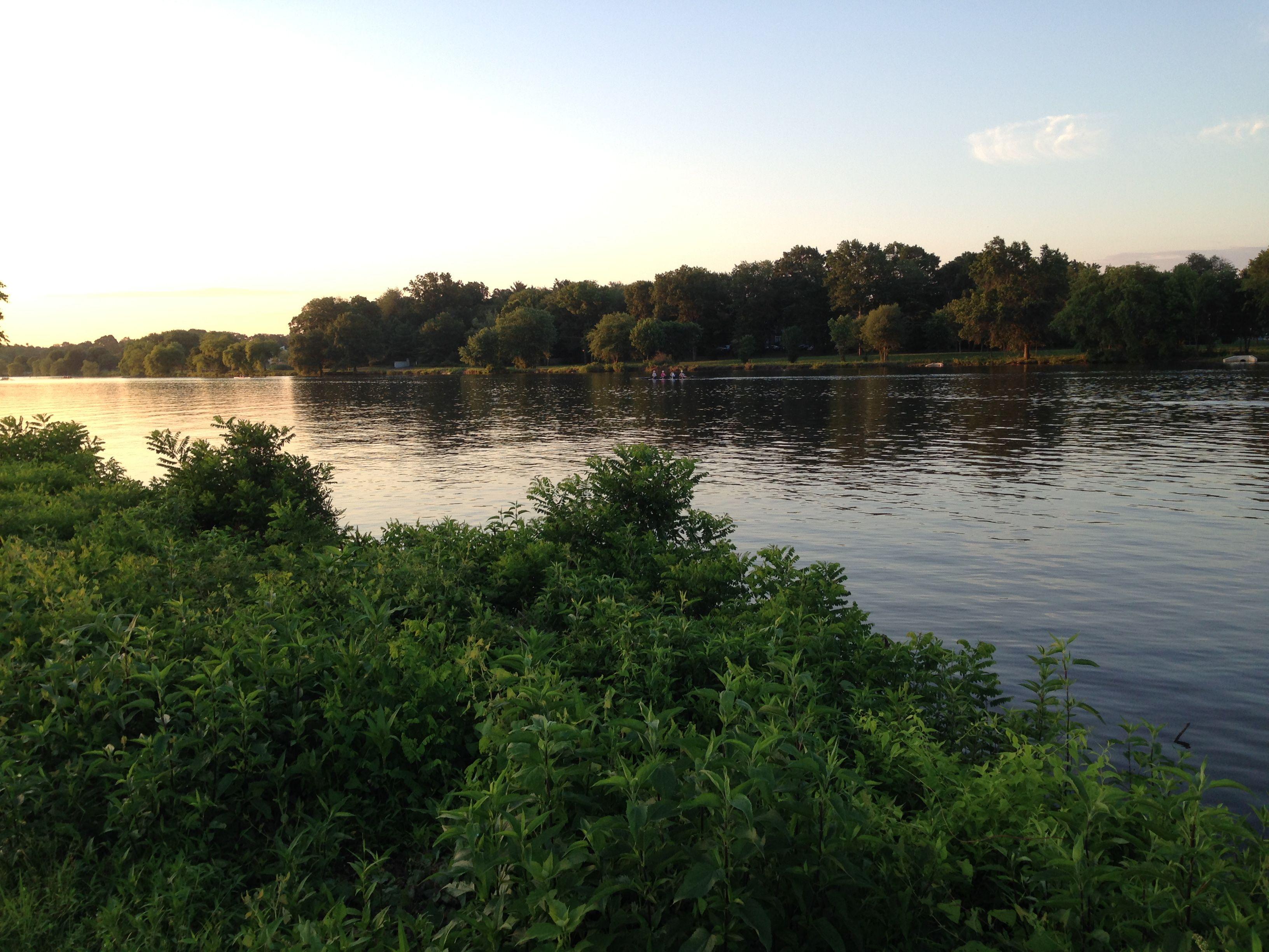 Cooper River shortly after sunrise.
