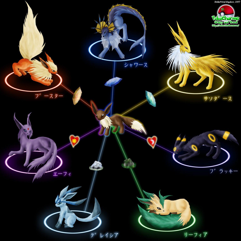 Eevee El Pokemon Evolución Mucho Pokemon Evoluciones Eevee Eevee Pokemon Pokemon