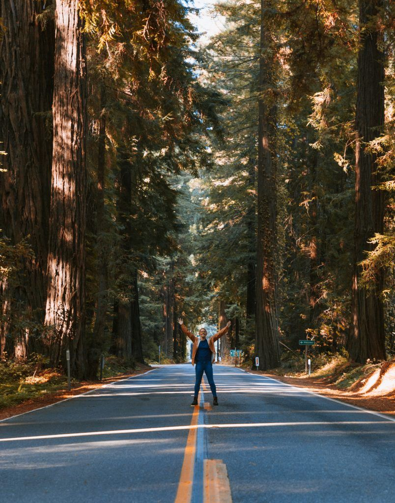 Driving Seattle to San Francisco: An Epic Pacific Northwest Roadtrip