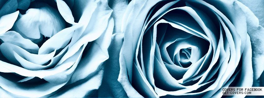 Blue Profile Facebook Rose Covers Facebook Baby Covers gSFwxF