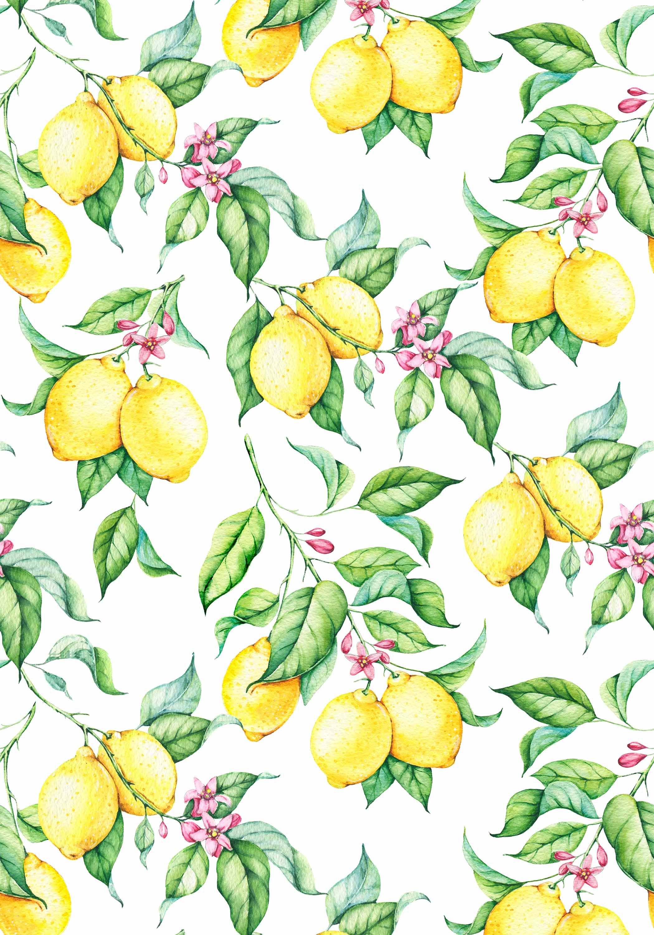 Watercolor Lemons Wall Covering Peel And Stick Wallpaper By Green Planet Print Paper Wallpaper Special Wallpaper Brick Wall Drawing