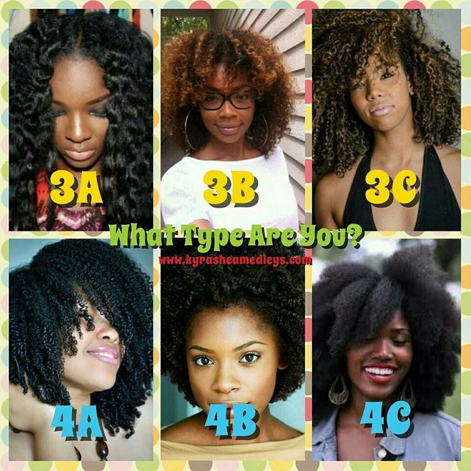 Pin by Letoria Bennett on Hair in 2019 Natural hair types Hair type Hair type chart