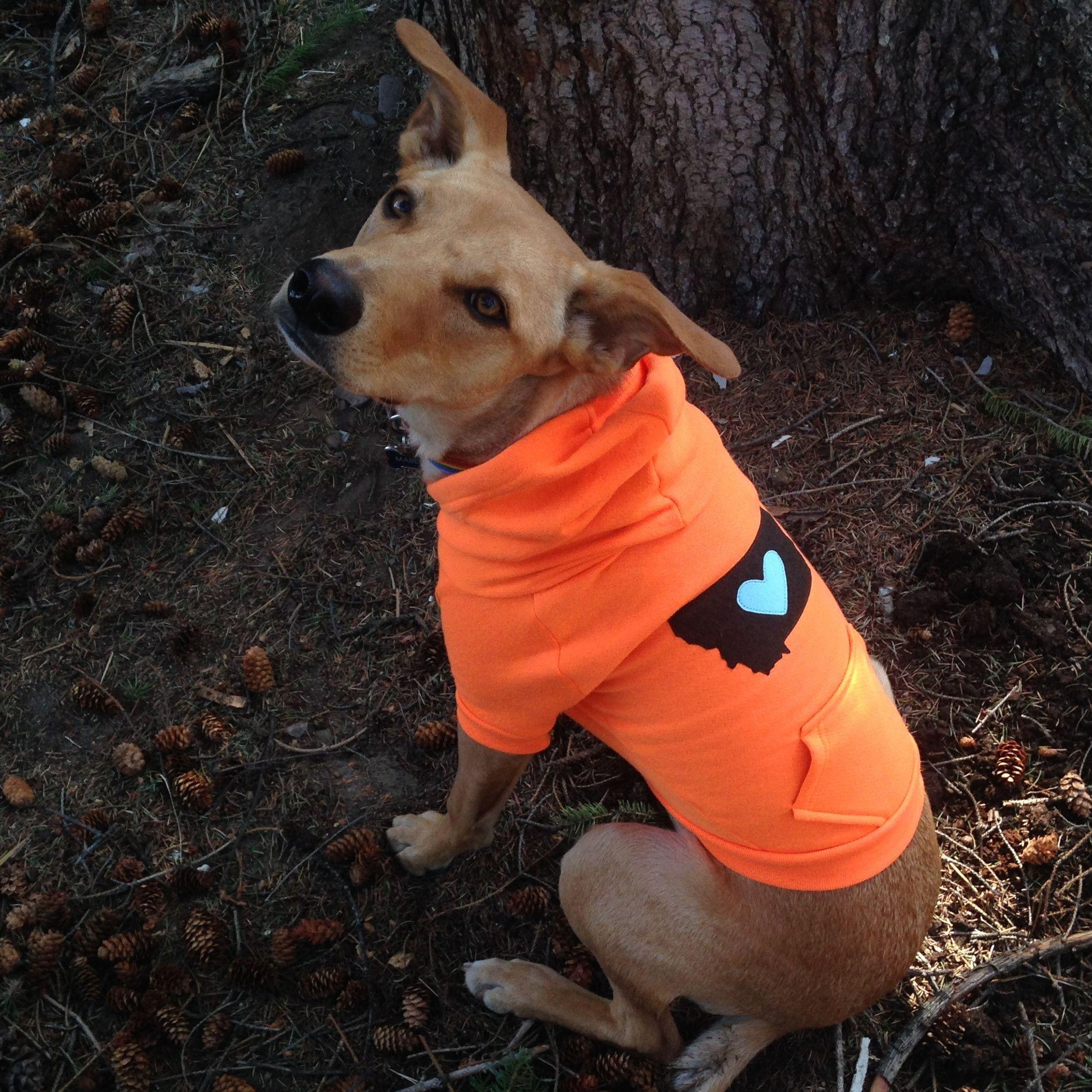 dog hoodie / hunters orange