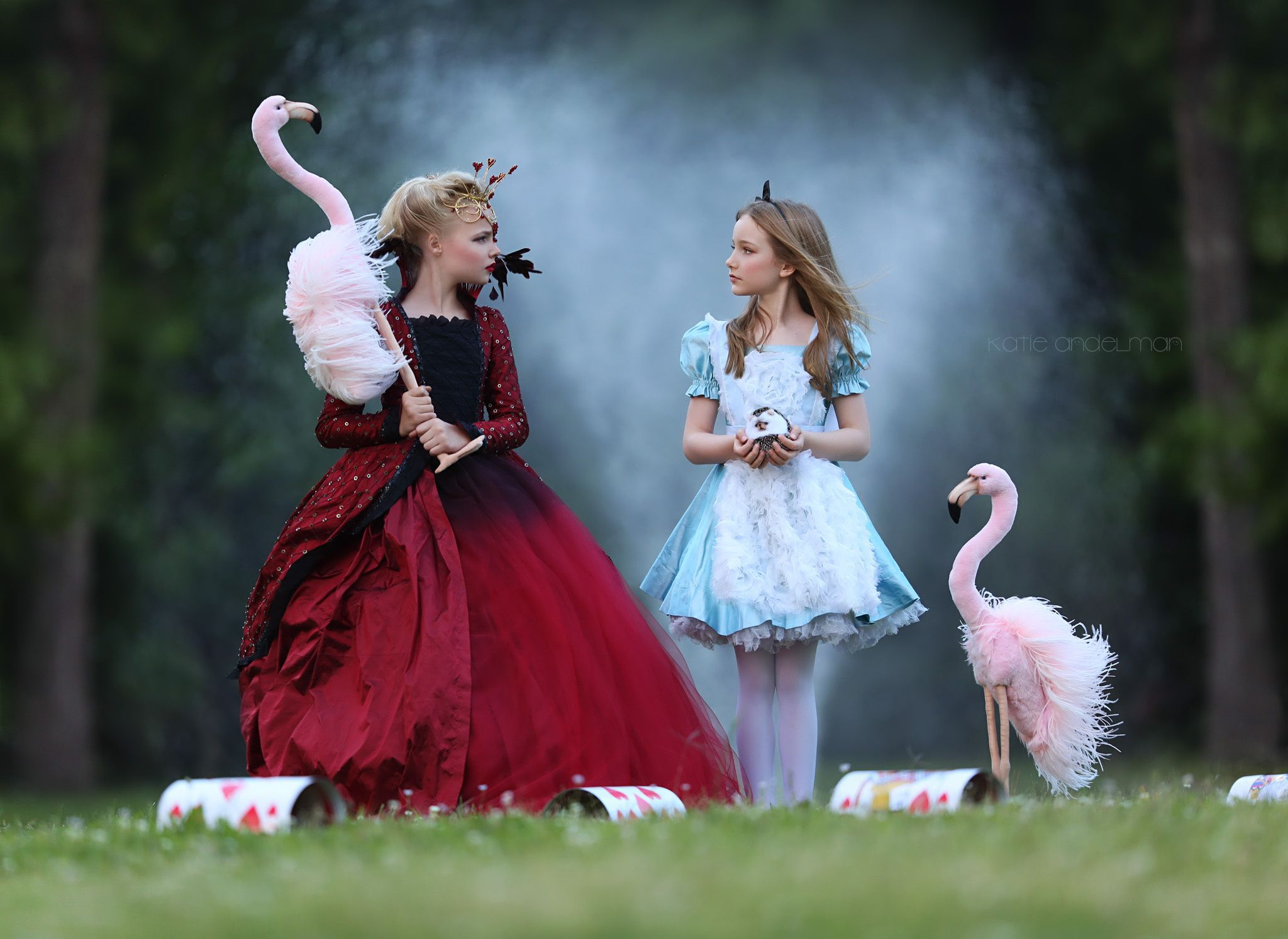 hello Alice Alice in wonderland costume, Disney alice, Wonde