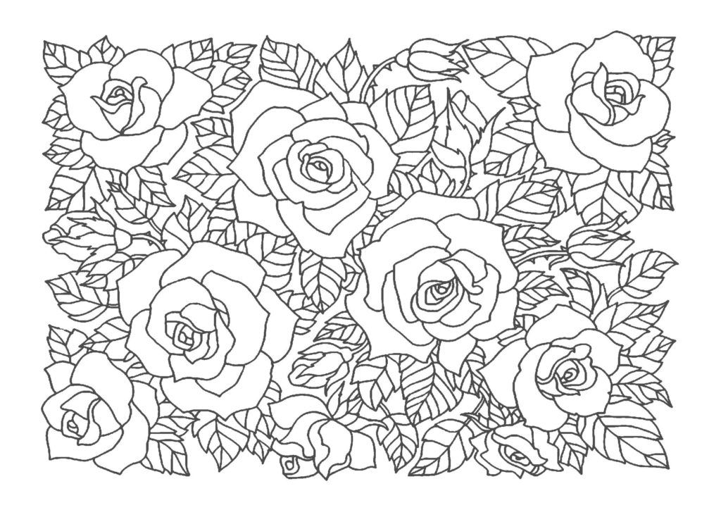 薔薇 バラ 03 A4無料印刷の大人のぬりえ 背景パターン 塗り絵 無料 花 塗り絵