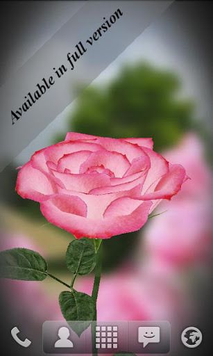 3d Rose Live Wallpaper Free Android Apps On Google Play Free