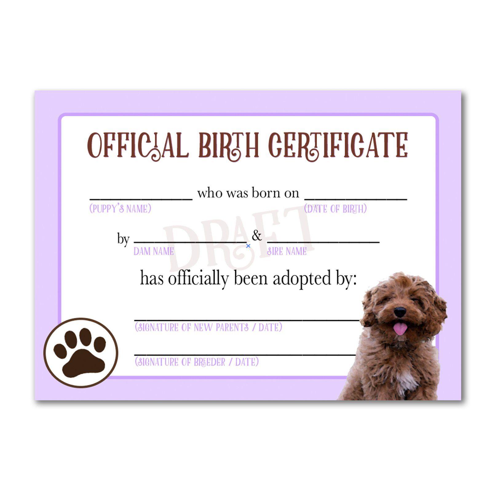 Printable Goldendoodle Birth Certificate Pet Adoption Certificate Birth Certificate Dog Adoption Certificate Adopt a pet certificate template